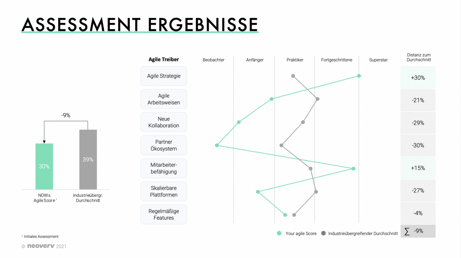 Agile Assessment Report Example