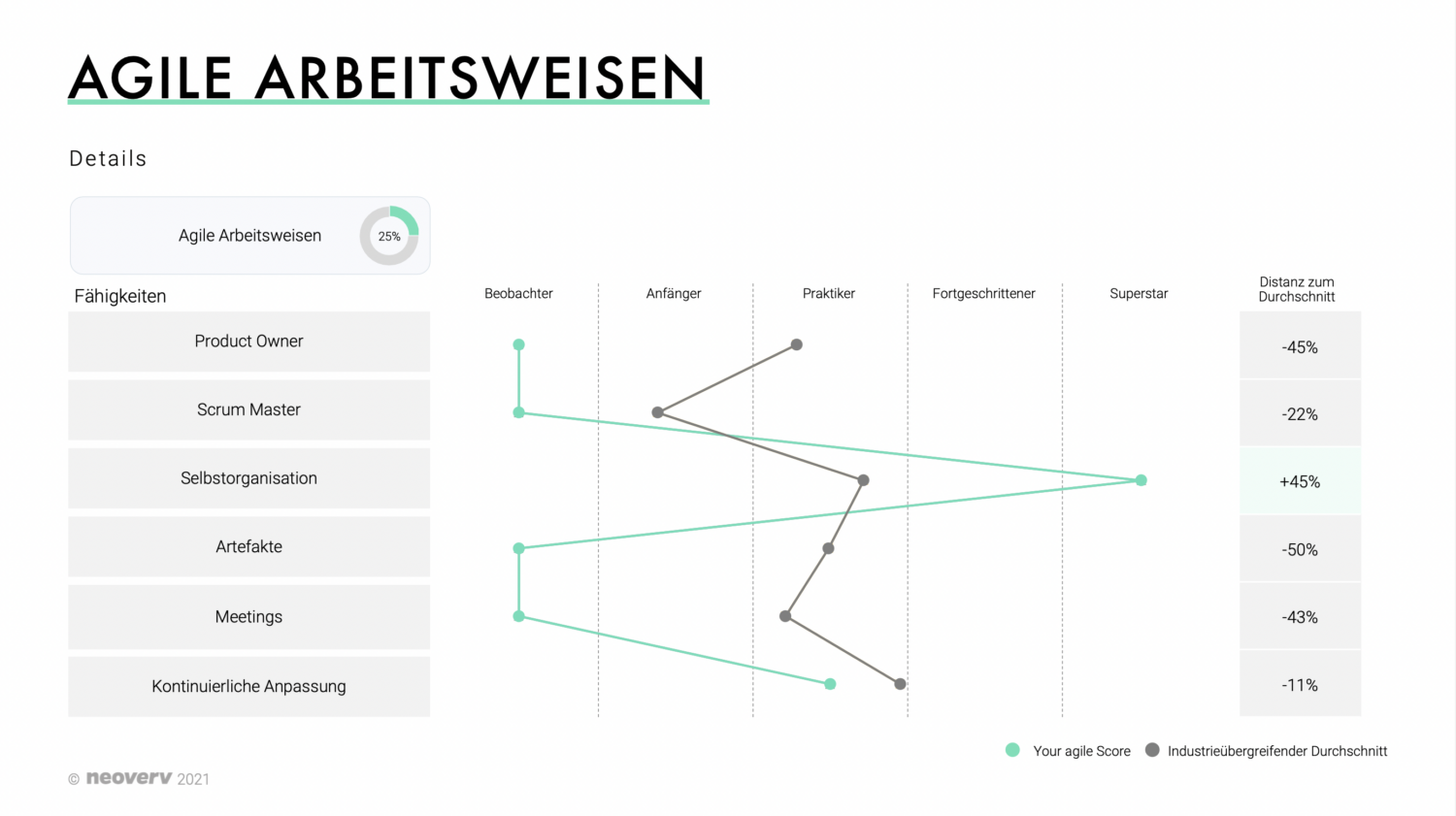 Agile Assessment Report Example - Agile Arbeitsweise